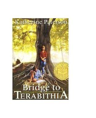 2020-01-26 Novel Insights Bridge to Terabithia